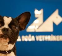 doga-veteriner-klinigi-216
