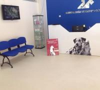 doga-veteriner-klinigi-673