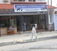 bagarasi-veteriner-klinigi-260