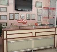 bilvet-veteriner-klinigi-952