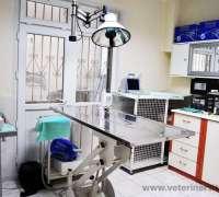 kheiron-veteriner-klinigi-547