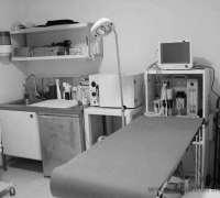mavisehir-veteriner-klinigi-264