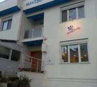 mavisehir-veteriner-klinigi-699