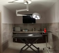 asyam-veteriner-klinigi-502