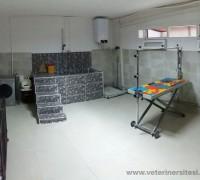 asyam-veteriner-klinigi-714