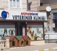 animal-planet-veteriner-klinigi-921