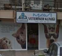 mavi-veteriner-klinigi-475