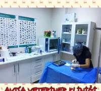 avisa-veteriner-klinigi-105