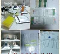 avisa-veteriner-klinigi-504