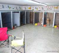 petopya-veteriner-klinigi-355