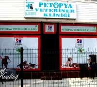 petopya-veteriner-klinigi-356