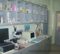 kent-veteriner-poliklinigi-211