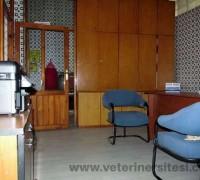 merkez-veteriner-klinigi-472
