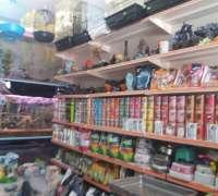 amazon-pet-shop-822