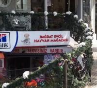 bagdat-evcil-hayvan-magazasi-253