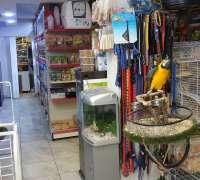 mercan-akvaryum-457