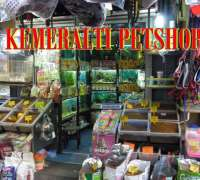 kemeralti-pet-shop-527