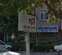 Nil Akvaryum - Pet Shop