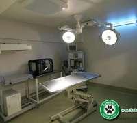 kokekuba-veteriner-poliklinigi-78