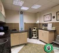 kokekuba-veteriner-poliklinigi-853