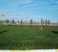 Diyarbakır B.B. Hayvan Bakım ve Rehabilitasyon Merkezi