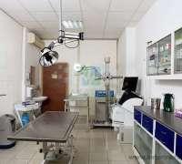 akademi-veteriner-klinigi-532