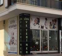 beylikduzu-liva-veteriner-klinigi-188