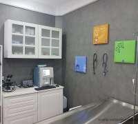 vetpozitif-veteriner-klinigi-808