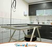 central-animal-veteriner-klinigi-143