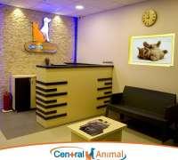 central-animal-veteriner-klinigi-831