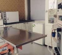 mayada-veteriner-klinigi-970