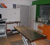 zuzu-veteriner-klinigi-766