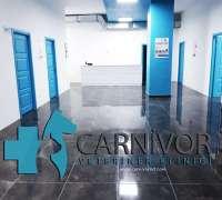 carnivor-veteriner-klinigi-75
