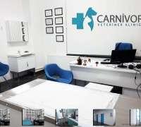 carnivor-veteriner-klinigi-923