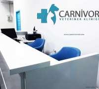 carnivor-veteriner-klinigi-949