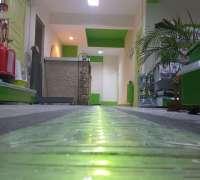 petzilla-veteriner-klinigi-169