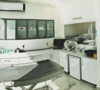vetmen-veteriner-klinigi-199