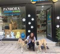 pandora-veteriner-klinigi-776