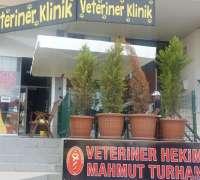 turhan-veteriner-klinigi-tras-evi-890