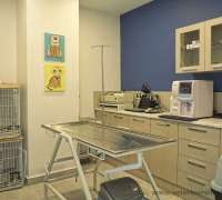 bahcekent-veteriner-klinigi-176
