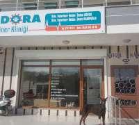 pandora-veteriner-klinigi-672