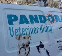 pandora-veteriner-klinigi-902