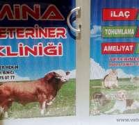 mina-veteriner-klinigi-499