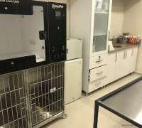 fiona-veteriner-klinigi-295