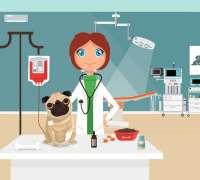 rante-veteriner-klinigi-842